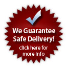 We Guarantee Safe Delivery!